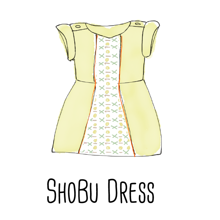 A dress made from Dad's shirt and some fabric from your stash.